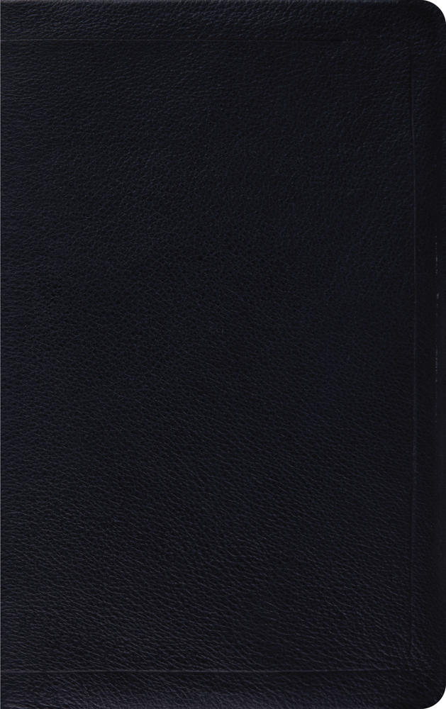 ESV Thinline Bible