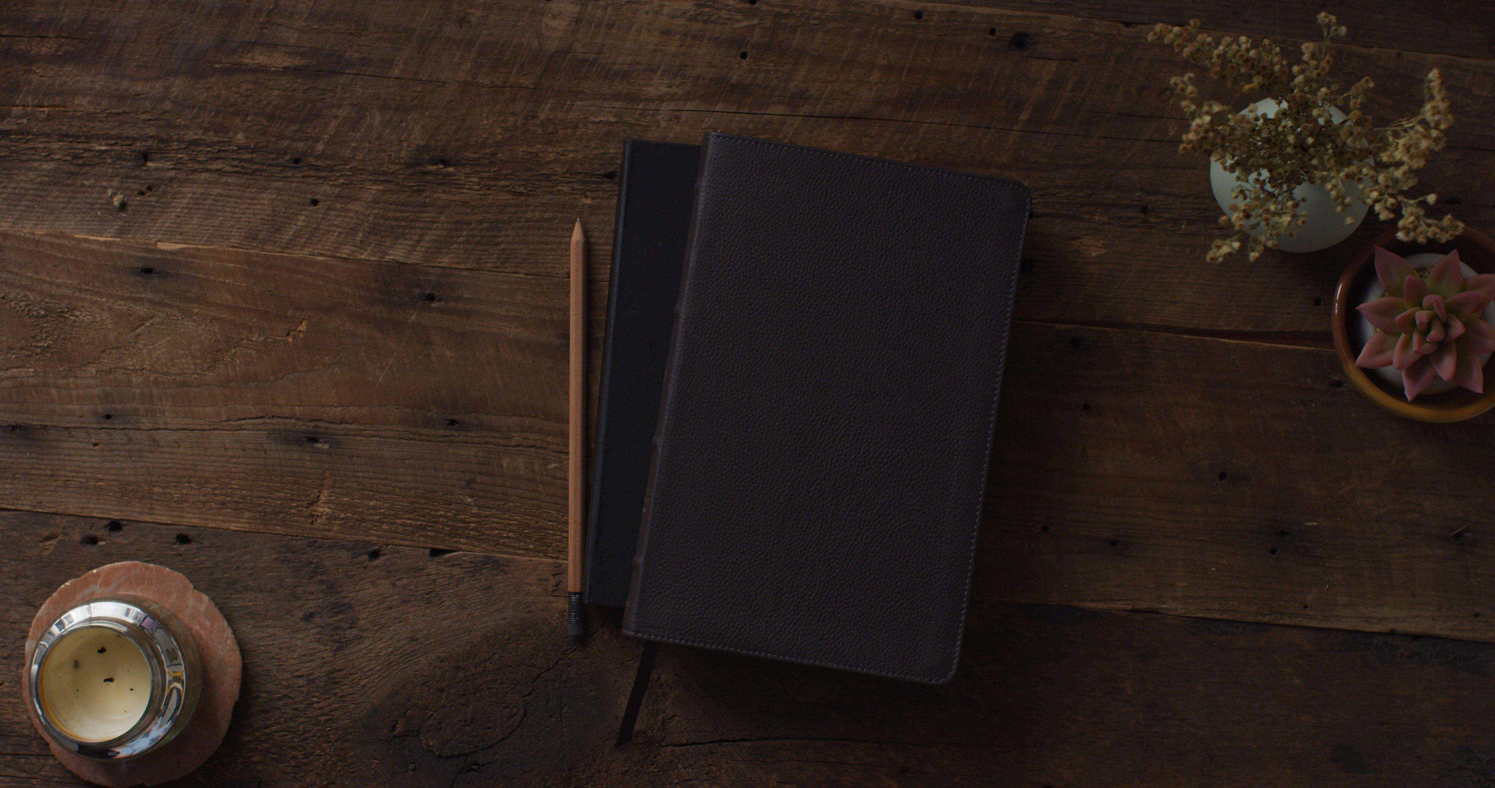 ESV Thinline Bible, Deep Brown, Buffalo Leather