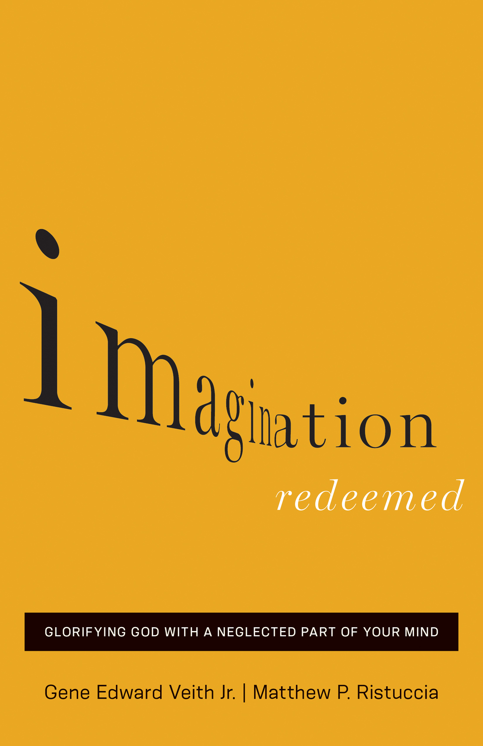 Imagination Redeemed