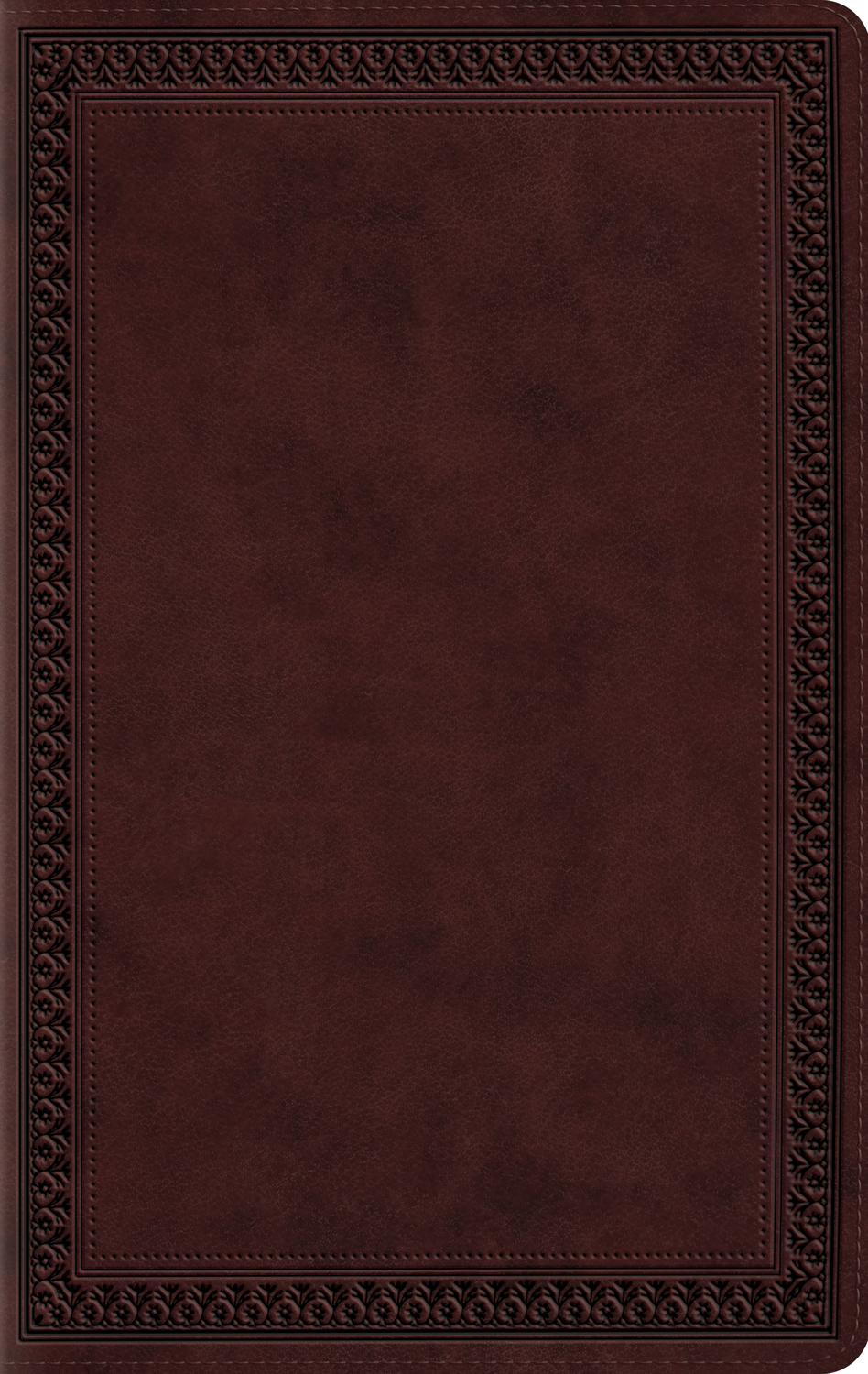 ESV Large Print Value Thinline Bible