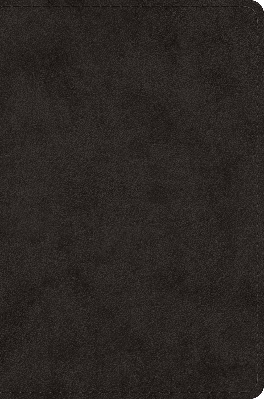 ESV Single Column Legacy Bible