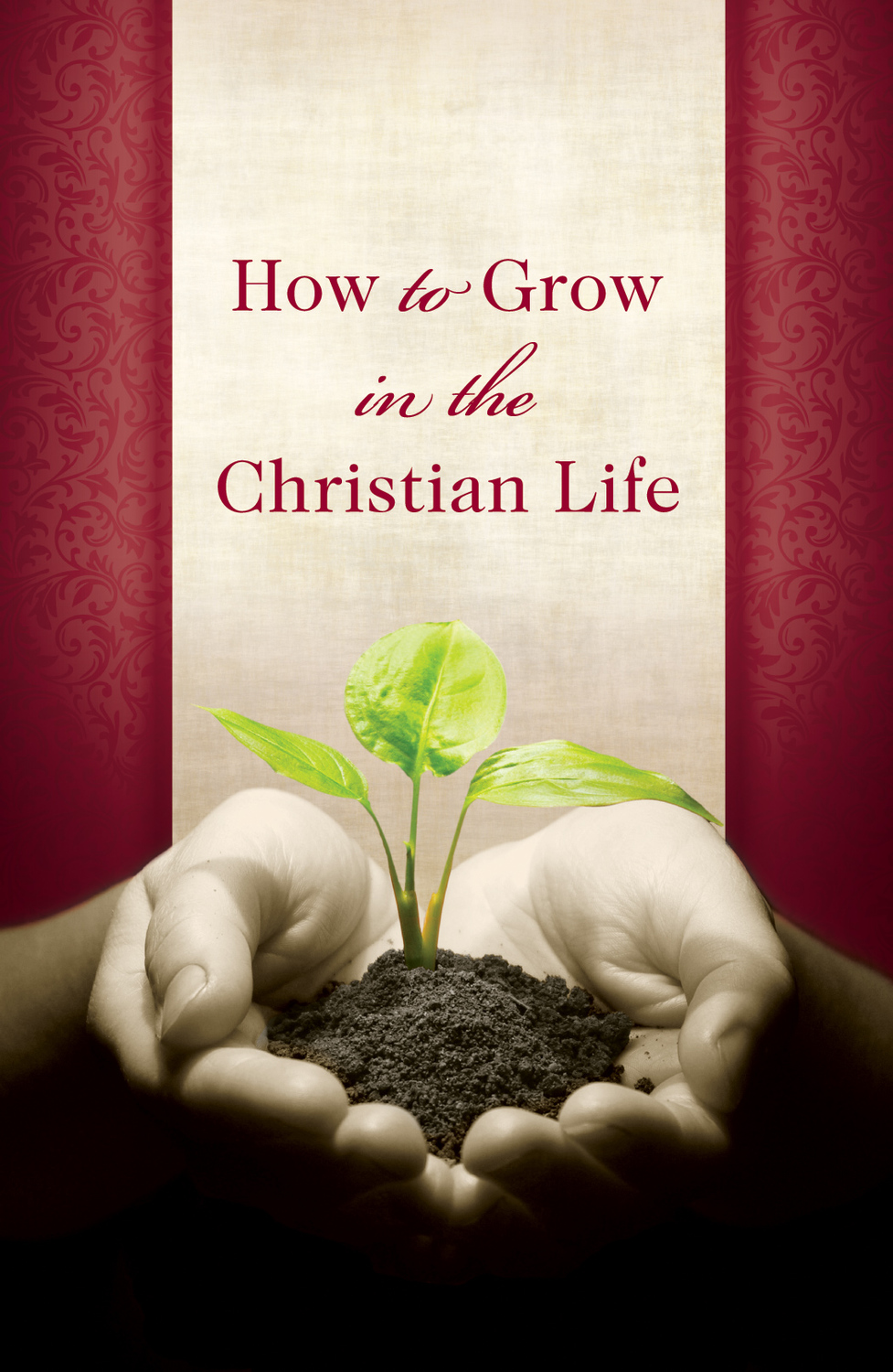 How to Grow in the Christian Life