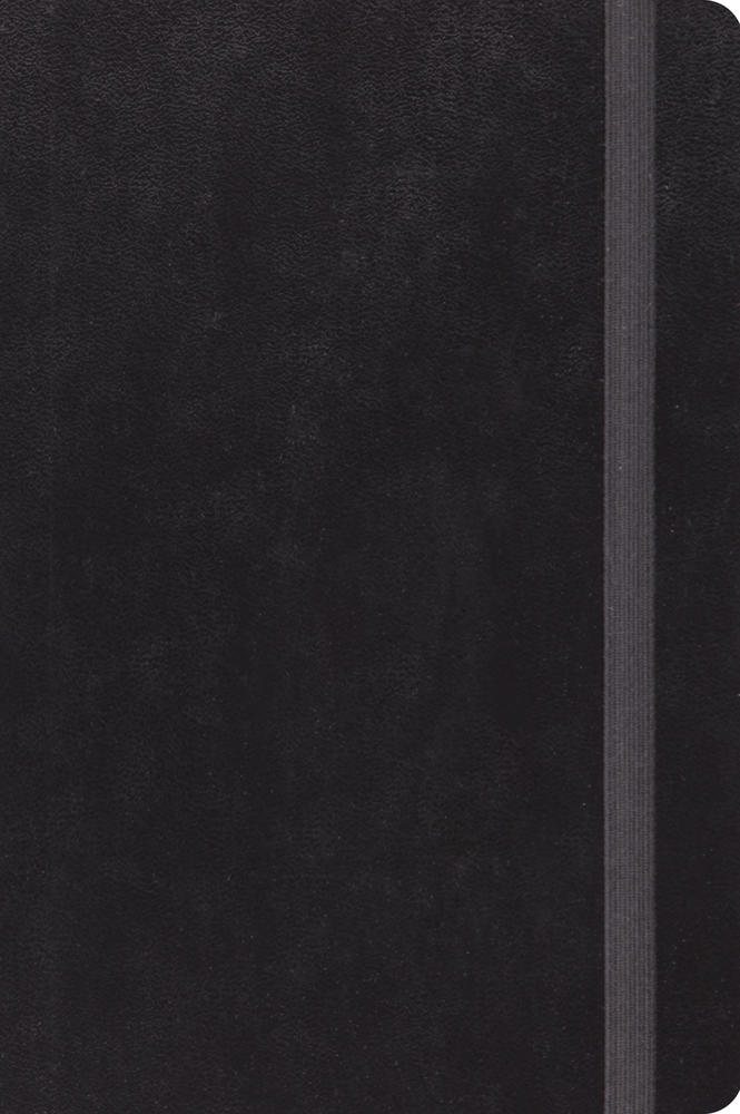 ESV Journaling New Testament, Inductive Edition