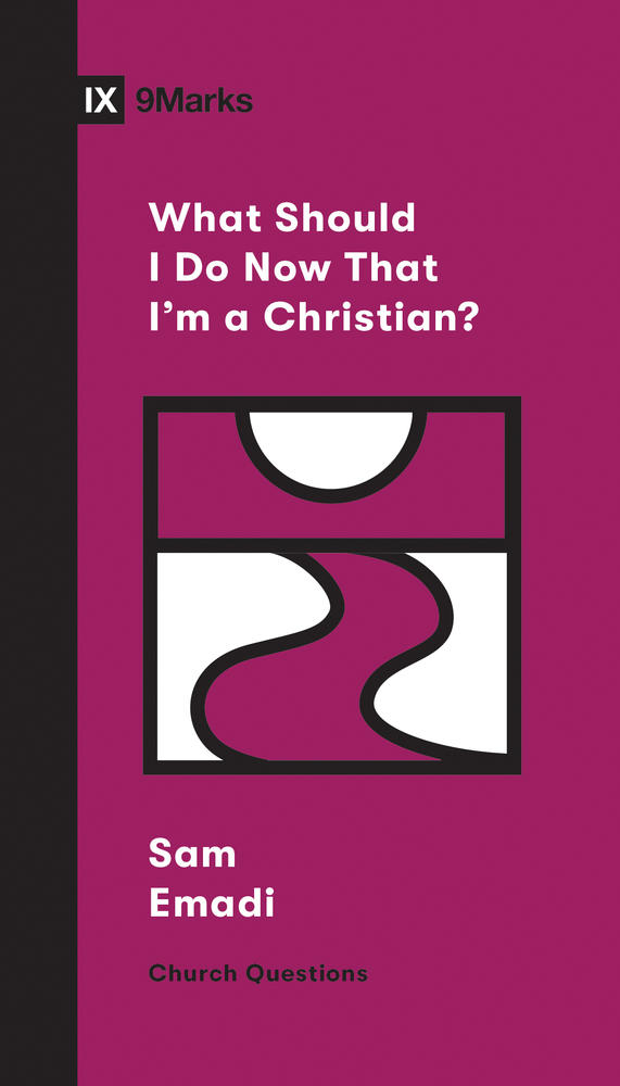 What Should I Do Now That I'm a Christian?