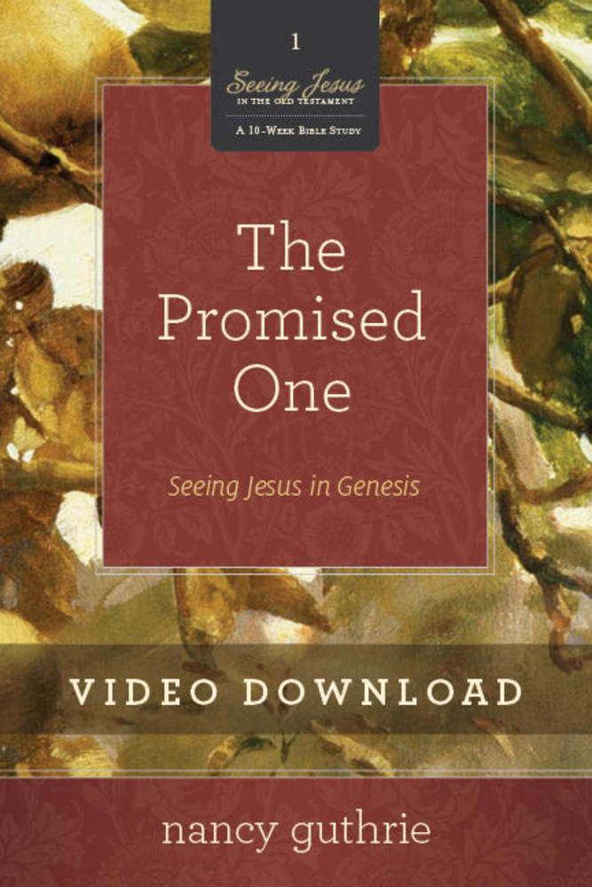 The Promised One Video Session 3 Download