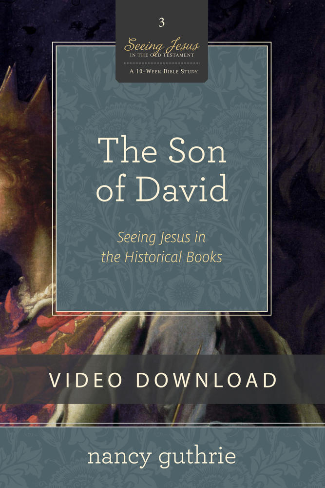 The Son of David Video Session 3 Download