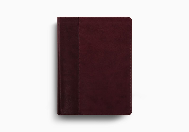 ESV Study Bible