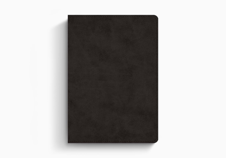 ESV Journaling Bible®, Interleaved Edition