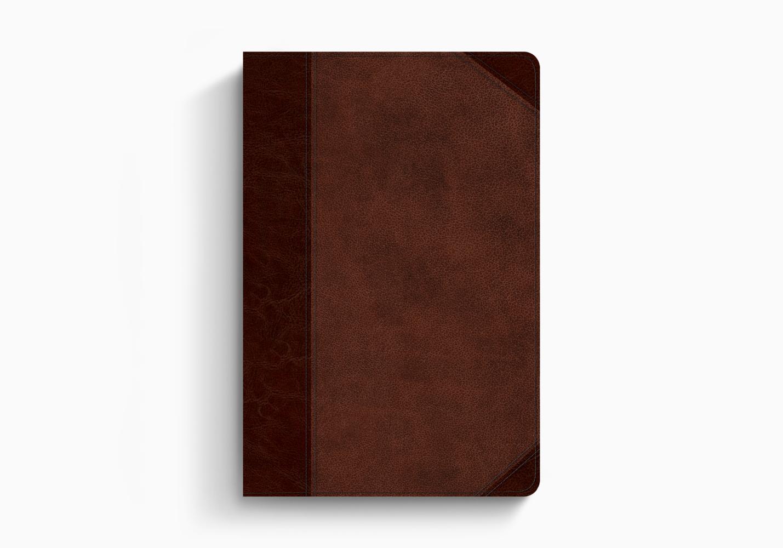 ESV Gospel Transformation Bible