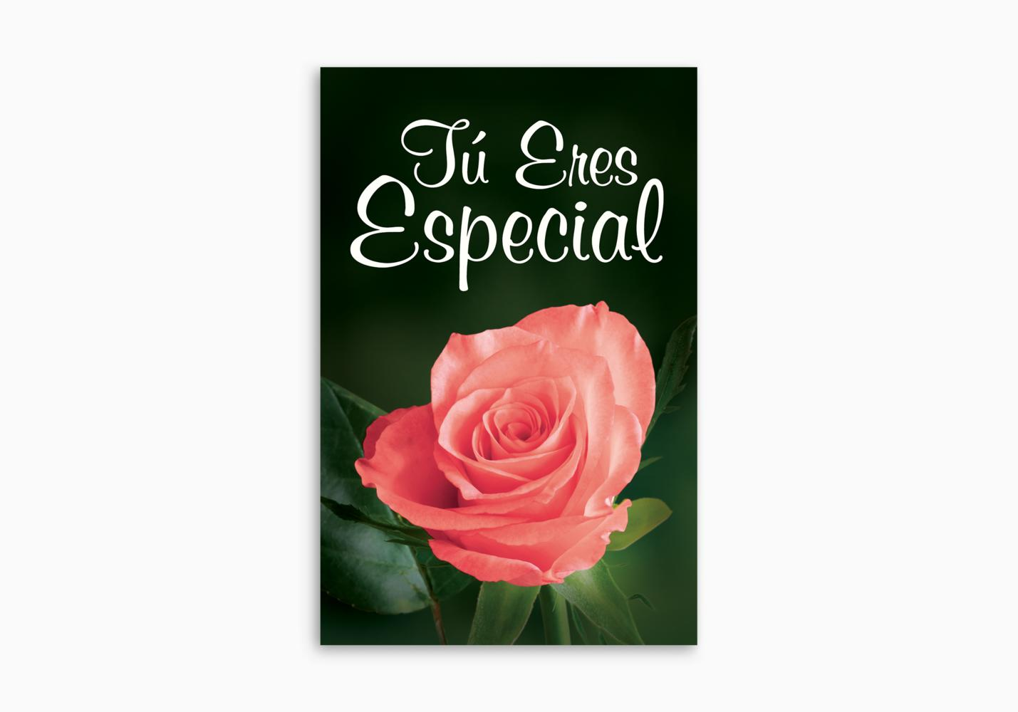 You're Special (Spanish)