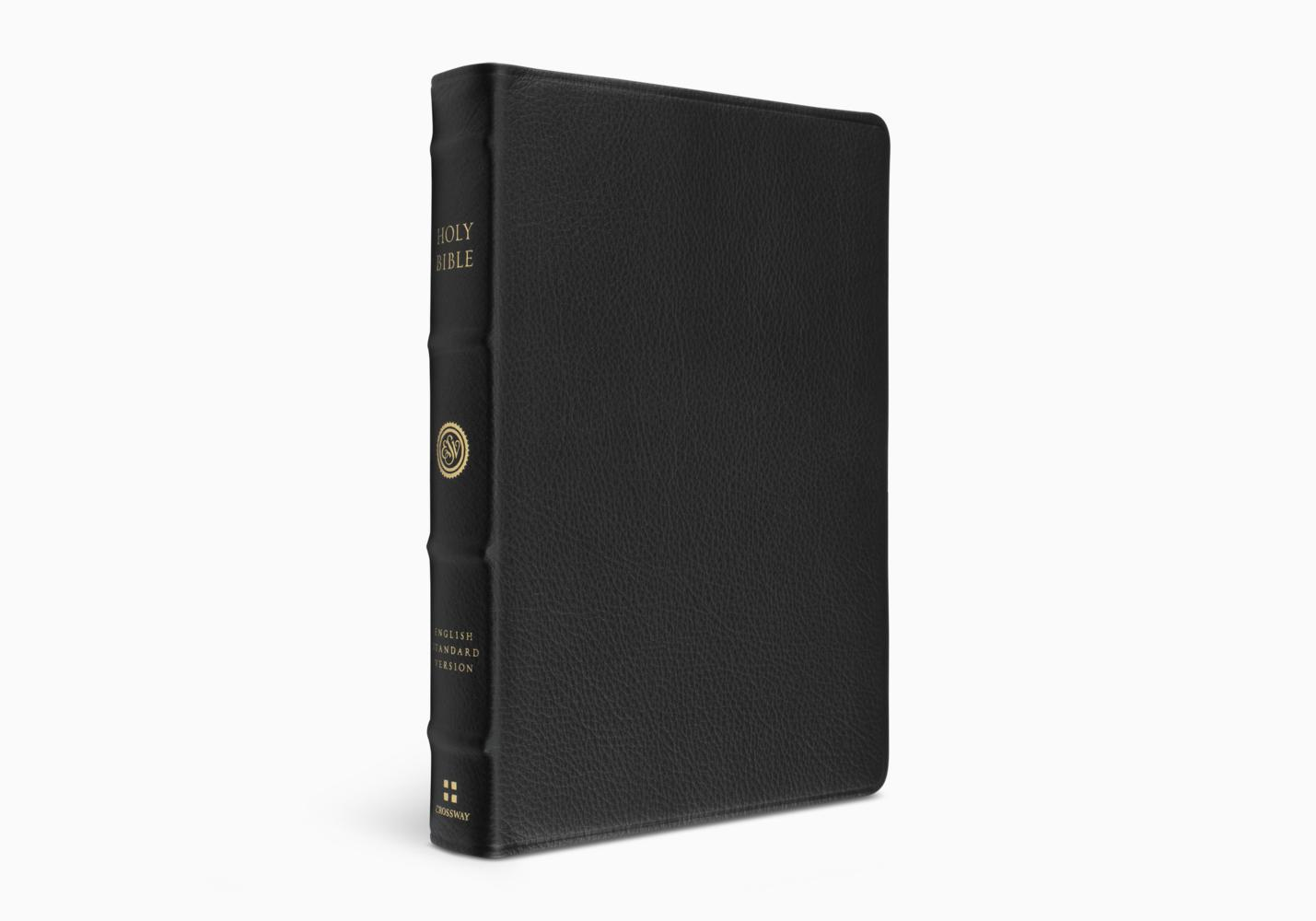 ESV Verse-by-Verse Reference Bible