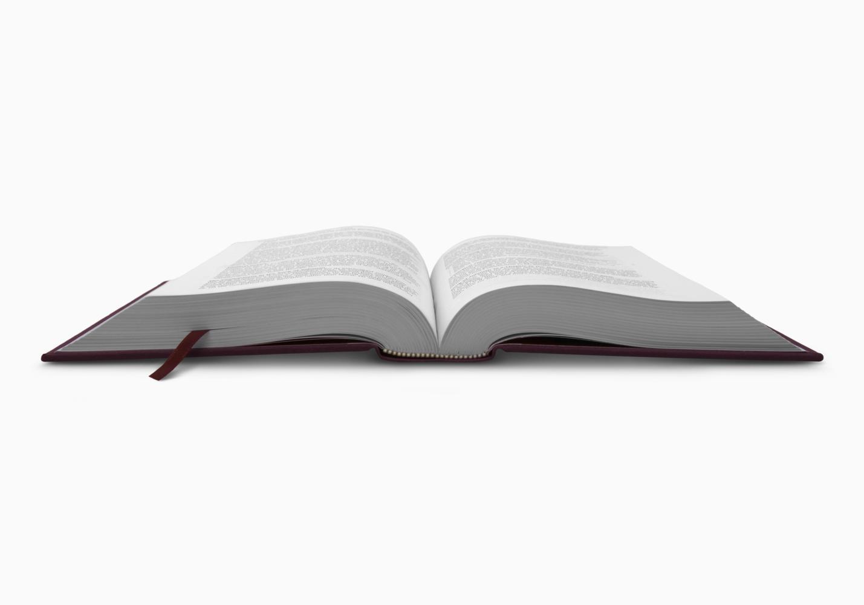 ESV Literary Study Bible
