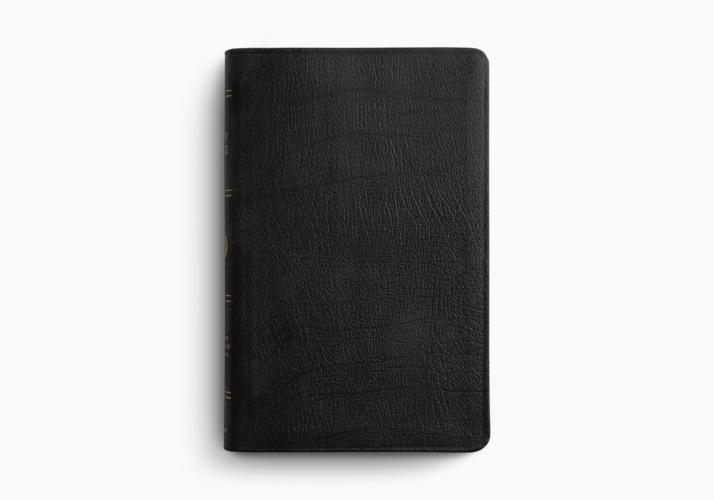 ESV Large Print Thinline Bible
