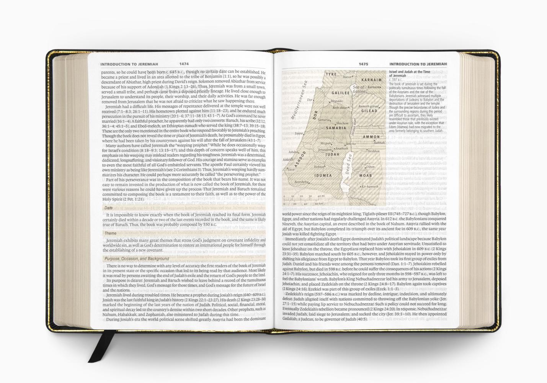 ESV Study Bible, Large Print
