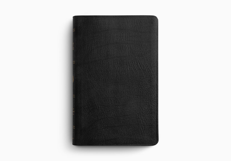 ESV Large Print Thinline Bible