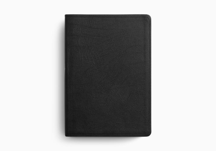 ESV Super Giant Print Bible
