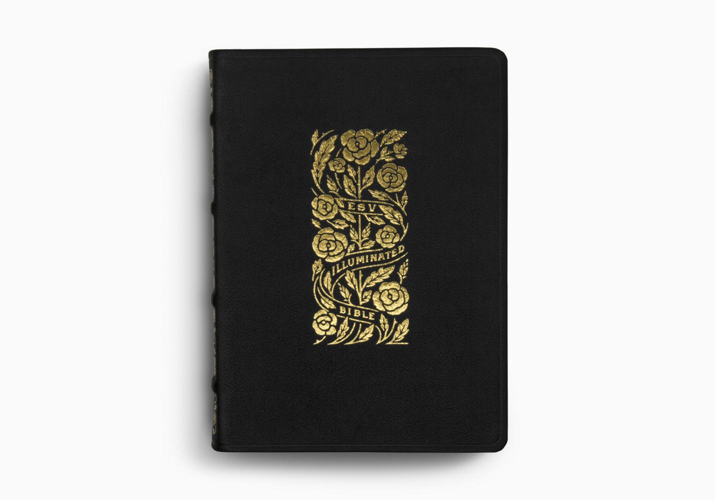 ESV Illuminated™ Bible, Art Journaling Edition