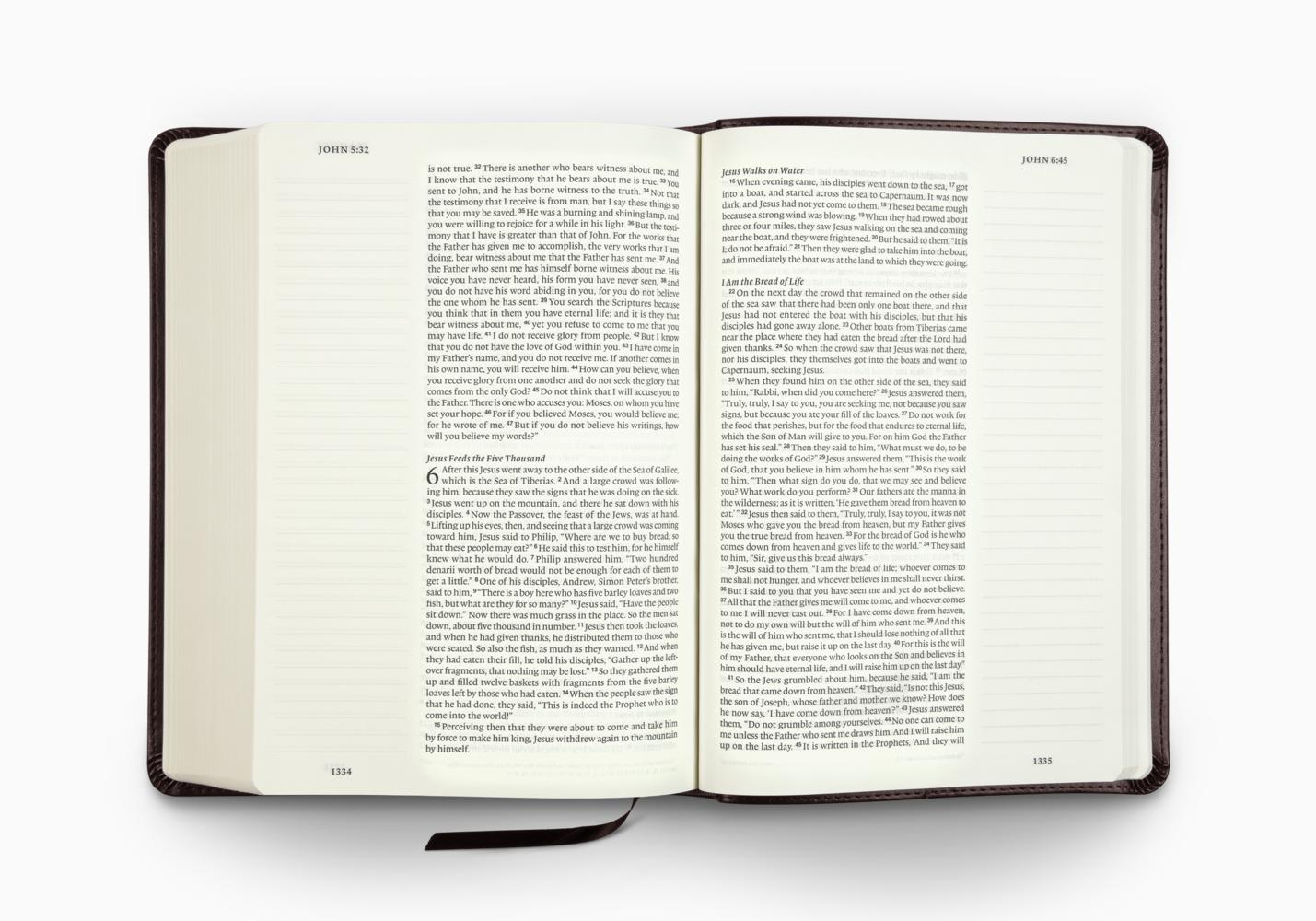 ESV Single Column Journaling Bible&reg, Large Print