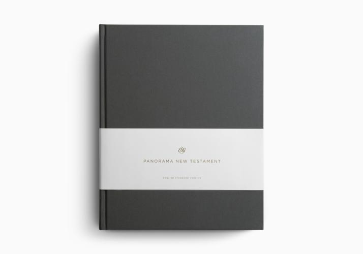 ESV Panorama New Testament