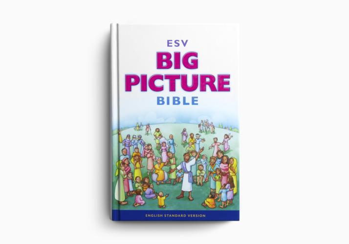 ESV Big Picture&reg Bible